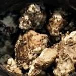 Золото и сыр возрастом 340 лет. Необычные находки